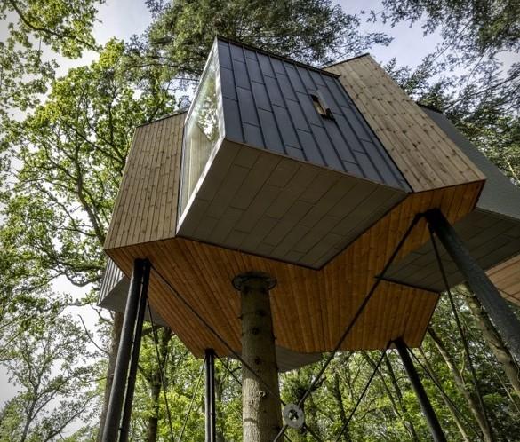 Treetop Hotel